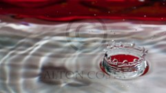 Water-Crown-IMG_5003-cr-web